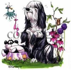 Tibetan Terrier - Panda Caricature