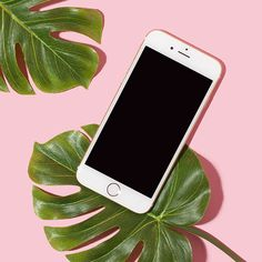 Lifestyle Pink iPhone No. 09 - Photography, Landscape photography, Photography tips