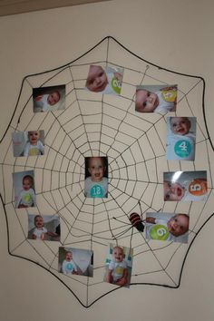 Charlotte's Web themed birthday party- used a spider web to display the month by month photos.