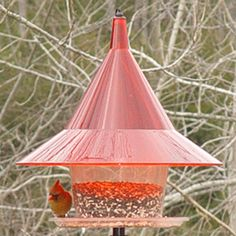 SquirrelStuff - SkyCafe Bird Feeder,  (http://www.squirrelstuff.com/skycafe-bird-feeder/)