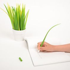 Can not find your pen after someone else take it away? Don't worry, the plant on your table might become the pens. Grass Leaf Pen would protect your eyes at the same time. So cool!
