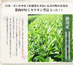 """Deep Steamed Green Tea known in Japanese as """"Fukamushi-cha"""". During processing deep steamed tea is steamed longer than regular Japanese green tea.This sounds like a simple procedure, but actually, it takes great skill and knowledge, such that most tea com Online Tea Store, Pure Green Tea, Different Types Of Tea, Tea Blog, Tea Companies, Matcha Green Tea, My Tea, Leaf Shapes, Sounds Like"""