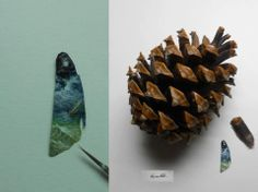 Sea view on a pine cone by Hasan Kale