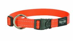 Amazon.com: Rogz Utility Large 3/4-Inch Reflective Fanbelt Dog Collar, Orange: Pet Supplies