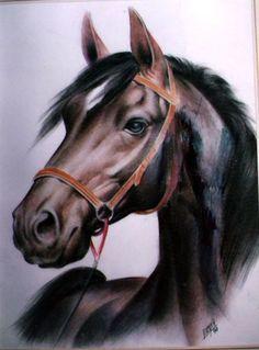 Resultado de imagen para pintura de ojos de caballo