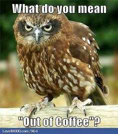 "What do you mean ""out of coffee"""