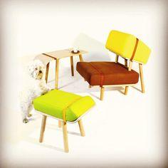 Hosting Hounds - dogs inspired furnitures by Tomski design