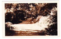 Photo postcard c.1925 of Lovers Walk, Cadboro Point, Victoria, BC. Located in the Ten Mile Point area of Saanich. Photographer unknown.