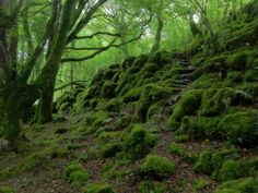 Cnoc Meadha - Google Search