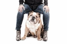 My Boots and my Boots (Bulldog)