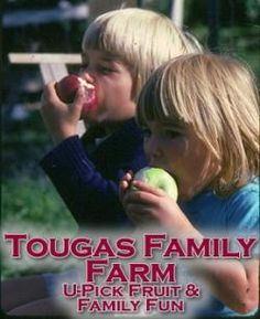 Tougas Family Farm - pick your own apples, strawberries, pumpkins, and more...