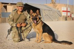 Two heroes in Helmand. Crown copyright. Find out more about 1st Military Working Dog Regiment: http://www.army.mod.uk/medical-services/veterinary/30499.aspx