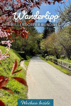 Venus, Sidewalk, Wanderlust, Country Roads, Places, Nature, Road Trip Destinations, Hiking, Viajes