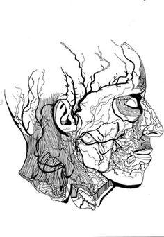 dessin veines - Recherche Google