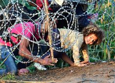 "Migrants crawl under a barbed-wire fence at the Hungarian-Serbian border near Roszke, Hungary. As Europe struggles with its worst migrant crisis since World War II, Hungary has become, like Italy and Greece, a ""frontline"" state. So far this year, police say about 141,500 migrants have been intercepted crossing into Hungary, mostly from neighboring Serbia. PHOTOGRAPH BY: ATTILA KISBENEDEK / AFP/GETTY IMAGES"