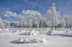 Ledová mlha z vodopádů pokryla stromy i okolní krajinu kolem vyhlídky Prospect Point. - zamrznuté Niagarské vodopády