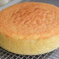 There are thousands of cake recipes, one of the quick and easy cake recipe is sponge cake. for beginners, this Easy sponge cake is simple to prepare. Sponge Cake Recipes, Easy Cake Recipes, Sweet Recipes, Bolo Vegan, Vegan Cake, Squirrel Food, Gluten Free Crust, Vanilla Sponge Cake, Vanilla Cake