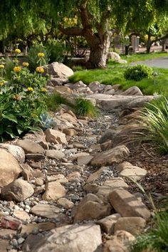 Dry creek bed with nice plantings and varied stone sizes for texture