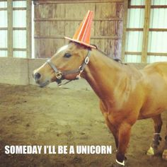 Some day I'll be a unicorn!
