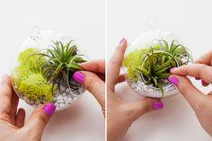 This art plant terrarium is so easy to make.