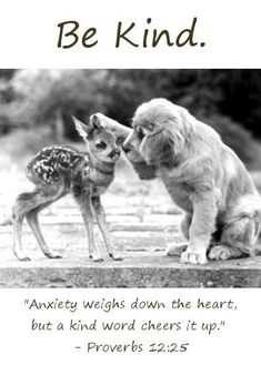 """Be Kind: """"Anxiety weighs down the heart, but a kind word cheers it up."""" - Proverbs 12:25"""