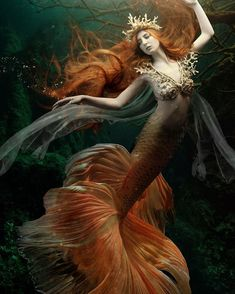 "361 Likes, 14 Comments - Nicola Grimshaw-Mitchell (@nicolamyboudoir) on Instagram: ""Another beautiful mermaid! @officialbethsmith by @nicolamyboudoir, make-up by @sarahelliottmua,…"""