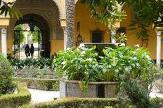 Aquí vivió la duquesa Cayetana de Alba - La Casa de Alba abre al público el aristocrático...