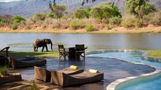 Chongwe River House hotel in Zambia  safari experience while soaking in water