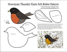 Longing for Spring Felt Robin Ornament robin-pattern-pic- lots of great patterns for making felt birds.because felt birds sound awesome. I need a reason to make this happen. Felt Ornaments Patterns, Bird Ornaments, Felt Christmas Ornaments, Felt Patterns, Bird Patterns, Applique Patterns, Christmas Crafts, Craft Patterns, Christmas Bird