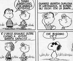 Che bisogno c'è? Linus Van Pelt, Snoopy Comics, Peanuts Snoopy, Art Of Living, Woodstock, Vignettes, Charlie Brown, Best Friends, My Love