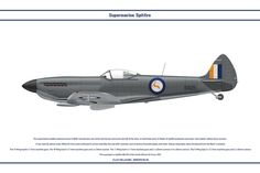 Spitfire Mk XVI South Africa 1 by Claveworks on DeviantArt South African Air Force, Supermarine Spitfire, Military History, Colour Schemes, Military Aircraft, Ww2, World War, Fighter Jets, Aviation