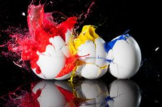 Eggciting by Ryan Taylor Photography, via Flickr