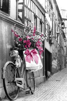 Bike, Flowers and a Bow