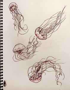 Jelly fish sketch http://th03.deviantart.net/fs71/PRE/f/2013/247/3/b/jellyfish_by_sakgaa-d6kz64t.jpg
