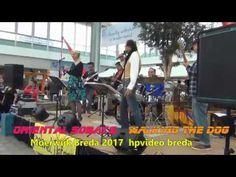 Oriental Sobats.  Walking The Dog Moerwijk Breda 2017 hpvideo Breda Henk...