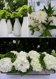 These could go well with the baby's breath too. If we want to mix it up.