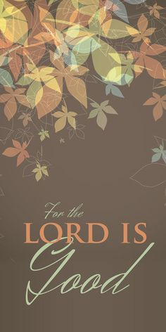 Church Banner – Fall & Thanksgiving – Give Thanks - Thanksgiving Decorations Thanksgiving Banner, Thanksgiving Decorations, Thanksgiving Iphone Wallpaper, Church Banners Designs, Church Logo, Banner Stands, Outdoor Banners, Vinyl Fabric
