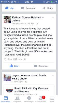 Thieves for a Splinter