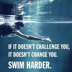 What's your next triathlon race or open water swim challenge? Swimming Memes, Swimming Tips, Swimming For Fitness, Funny Swimming Quotes, I Love Swimming, Open Water Swimming, Michael Phelps, Triathlon, Swimmer Quotes
