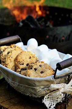 Graham Cracker Chocolate Chip Cookies~ Only Three Ingredients!