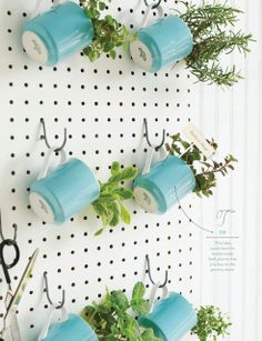 herbs in mugs hung on a peg rack (Sweet Paul Magazine)