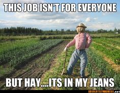Hay.... it's in my jeans