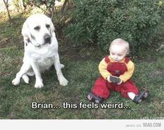 Brian...this feels weird