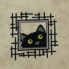 It's Daffycat: Little Black Cat
