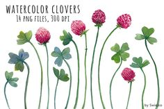 Watercolor Clipart, Clover - Illustrations