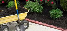 compost-mulch Lawn And Landscape, Landscape Design, Landscape Borders, Easy Garden, Lawn And Garden, Garden Ideas, Garden Bed, Garden Pests, Garden Tools