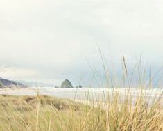 Oregon Beach Photography  Haystack Rock  by BLintonPhotography