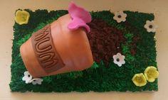 Mothers day novelty cake