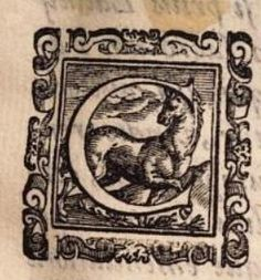 lettrine cheval 1589/ initial letter horse 1589