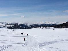 Eastern in Rondane, Norway.